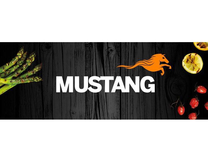 Mustang Holzstifte für Flammlachsbrett 20 Stück im Beutel